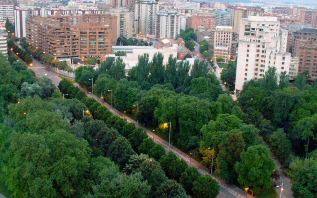 10 beneficios de los árboles urbanos