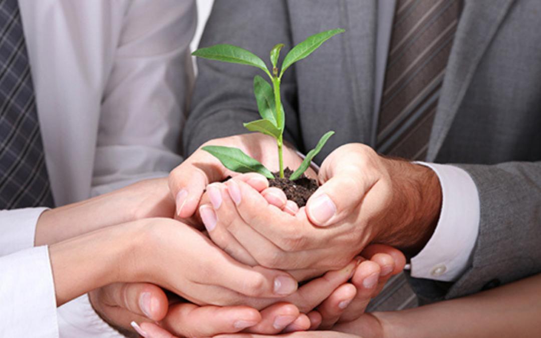 ¿Cómo aumentar la conciencia ambiental de la sociedad?